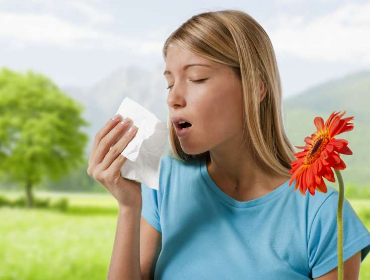Czym są alergie i ja